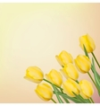 Spring background with beautiful tulips EPS 8 vector image