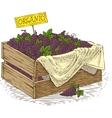 Wooden Box with Ripe Grapes vector image vector image