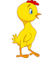 cartoon little chick isolated on white background vector image vector image