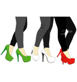 Legs and Italian shoes vector image vector image