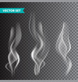 realistic cigarette smoke set isolated on vector image