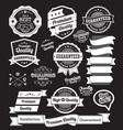 set vintage badges and design elements vector image vector image