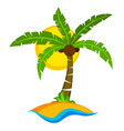 tropical palm tree with sun vector image vector image