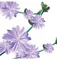 Watercolor delicate purple flowers bouquet vector image vector image