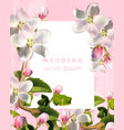 cherry flowers vintage card beautiful vector image vector image