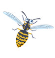 flying a cheerful wasp children character insect vector image