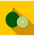 Lime icon flat style vector image vector image