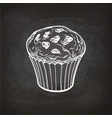 muffin sketch on chalkboard vector image vector image