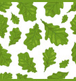 seamless of oak leaves in green colors vector image