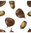 seamless pattern with hand drawn chestnuts vector image vector image