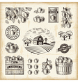 Vintage apple harvest set vector image vector image