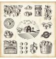 vintage apple harvest set vector image vector image