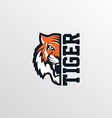 wild tiger logotype theme vector image