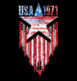 american grunge flag an american grunge flag vector image vector image