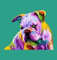 colorful english bulldog on pop art style vector image vector image