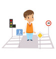 cute boy and road signs child learning rules of vector image