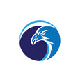 eagle face logo vector image