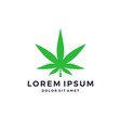 green cannabis marijuana hemp leaf logo vector image