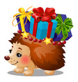 hedgehog carries a box with christmas gifts with vector image