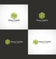 hexa castle logo vector image