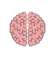 human brain anatomy idea think vector image vector image
