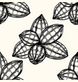 seamless pattern of cocoa vector image vector image
