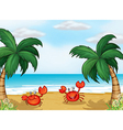 Seashore crabs vector | Price: 1 Credit (USD $1)