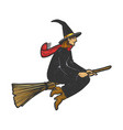 witch flying on a broom sketch vector image vector image