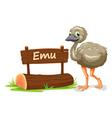 Cartoon zoo emu sign vector image vector image