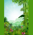 forest landscape of tropical background vector image vector image