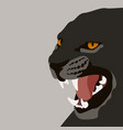 puma face flat style front vector image vector image