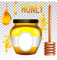 realistic 3d bank of honey vector image vector image