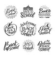 back to school set of hand writing words vector image