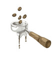 coffee beans fall into portafilter vector image