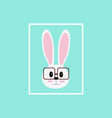 image of a rabbits wear glassesrabbit hipster vector image