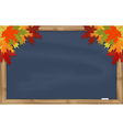 Maple leaves on grey chalkboard vector image vector image