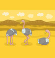 three happy ostrich vector image