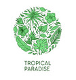 tropical paradise poster template exotic palm vector image