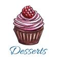 Patisserie dessert emblem Muffin sketch icon vector image