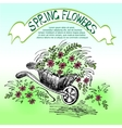carriage with flowers vector image vector image