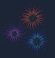 colorful firework on dark vector image vector image