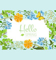 flowers background wild plants and herbs vector image