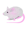 gray mouse vector image vector image