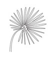 one continuous line drawing tropical palm vector image