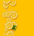 orange fruits background sliced orange pieces vector image vector image