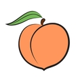 peach icon vector image vector image