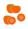 persimmon logo vector image vector image