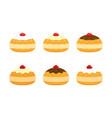 sufganiyot doughnuts set for hanukkah vector image vector image