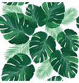 tropical palm leaves background vector image vector image