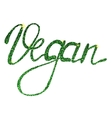 Vegan lettering tinsels vector image vector image